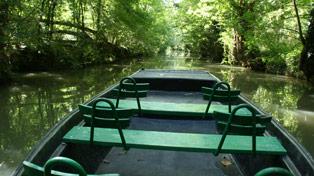 location barque avec guide arcais marais poitevin